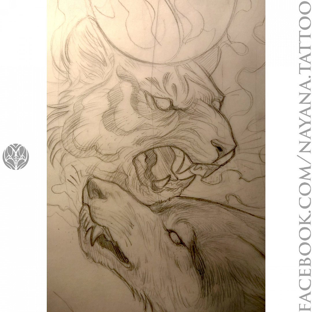 tiger-wolf-drawing